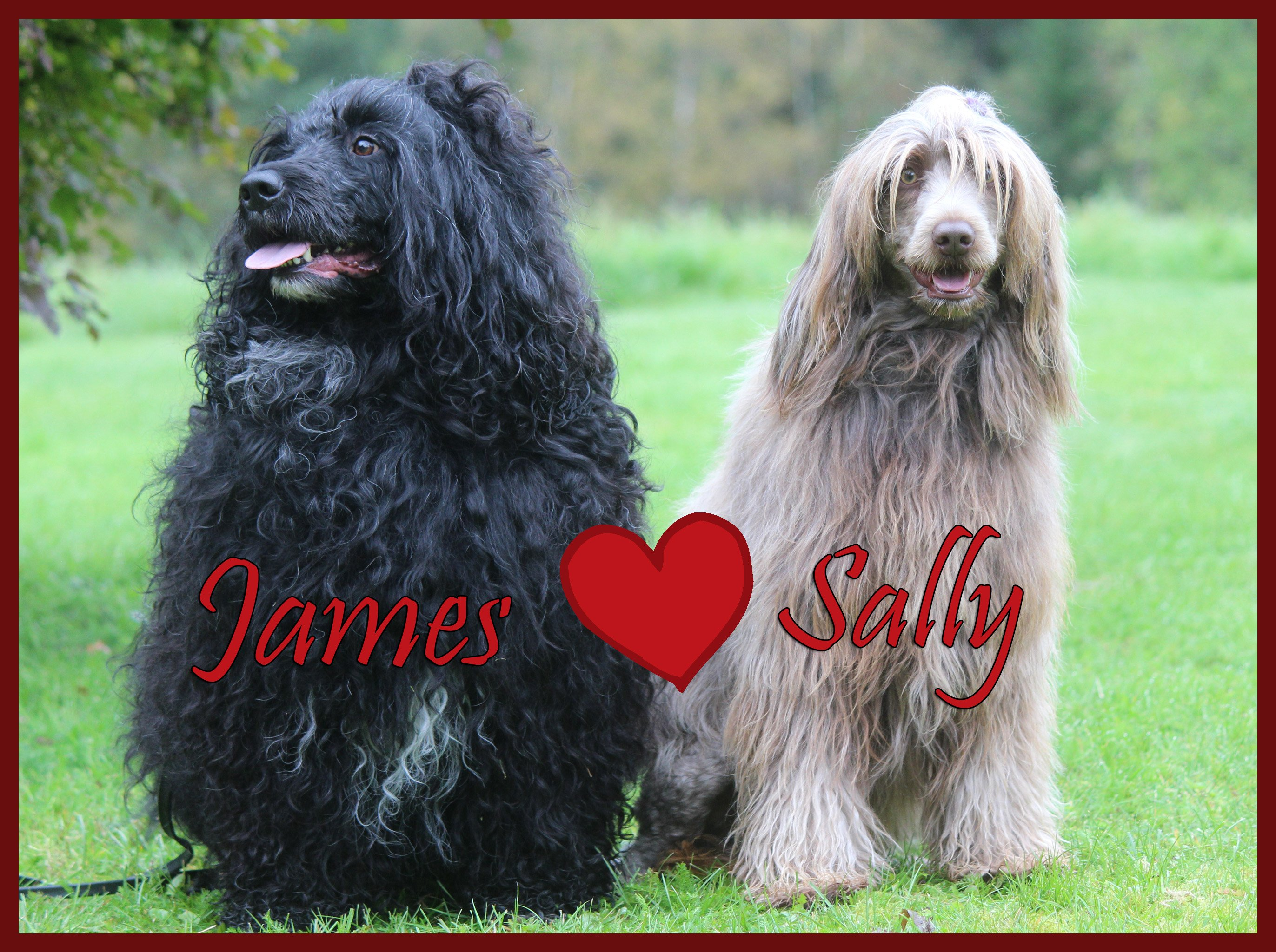 Sally-James